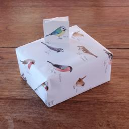 Wrapping paper with garden bird design