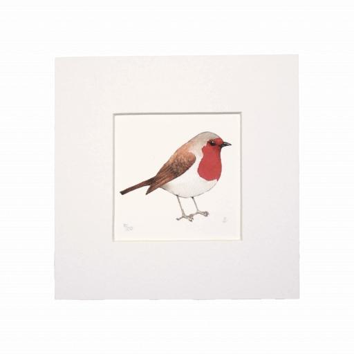 Robin  Mini Print