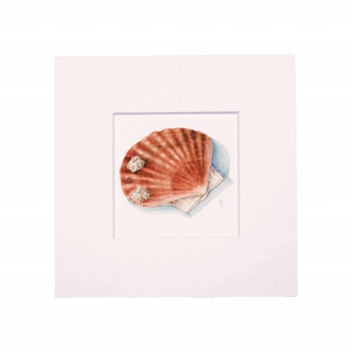 Scallop Mini Print