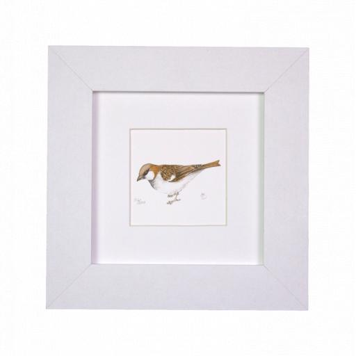 Sparrow Mini Print