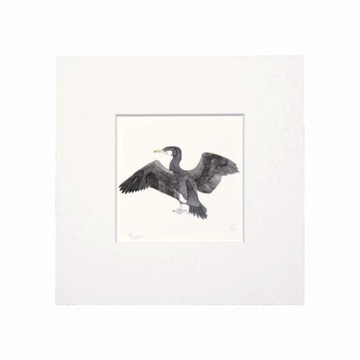 Cormorant Mini Print
