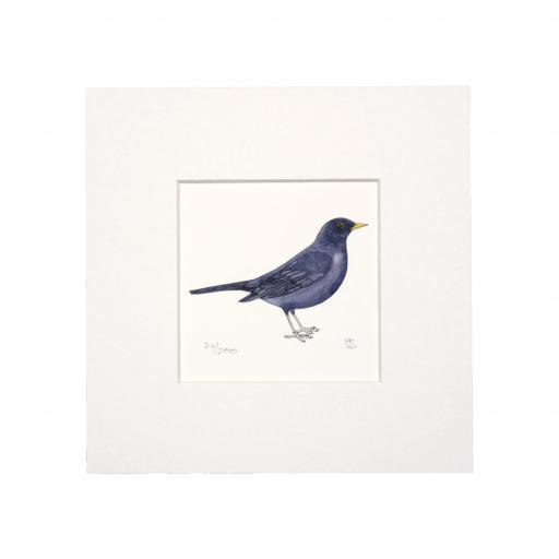 Blackbird Mini Print