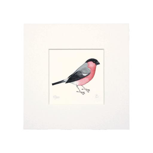Bullfinch Mini Print