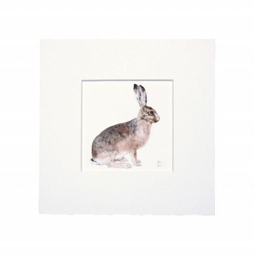 Hare Sitting Mini Print
