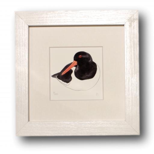 Oystercatcher Mini Print
