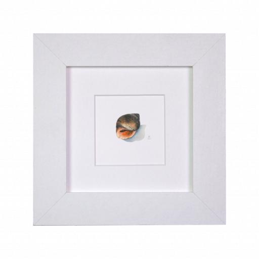 Winkle Mini Print