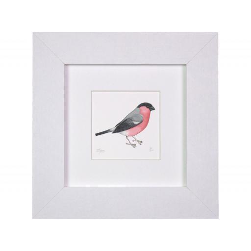 Bullfinch Mini Print
