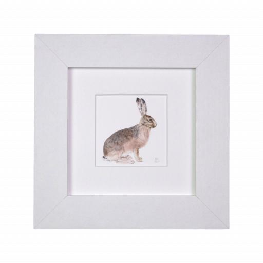 Hare Sitting Mini Print