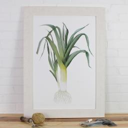 large framed leek (640x640).jpg