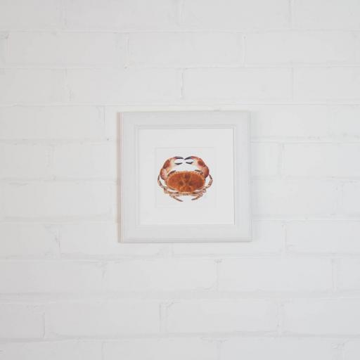 small crab framed.jpg