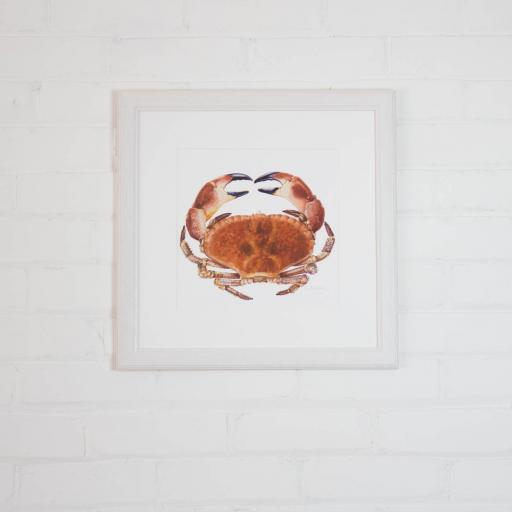 medium crab framed.jpg