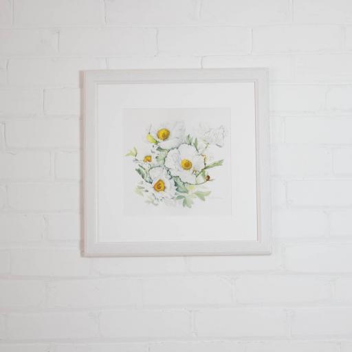romneya med framed.jpg
