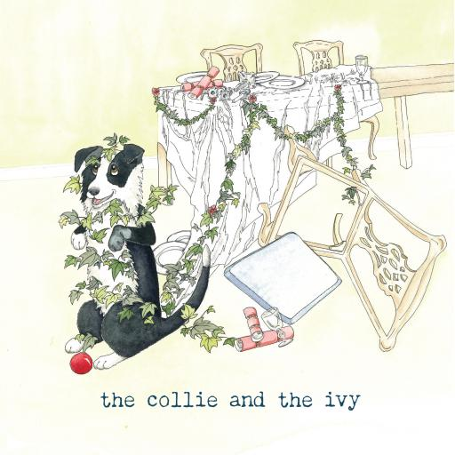 The collie and the ivy