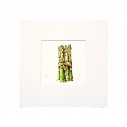 Asparagus mini -print 2.png