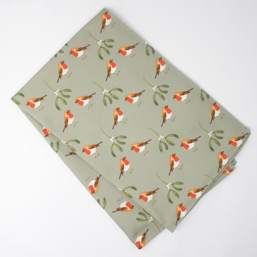 robin & mistletoe.jpg